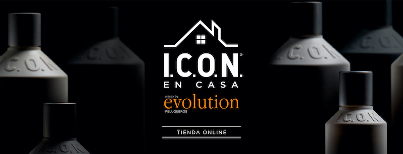 evolution_iconencasa-slider